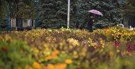 Клумба в одном из парков Бишкека во время дождя. Архивное фото