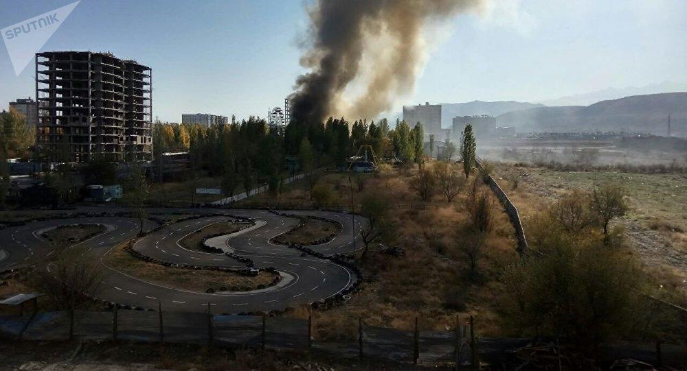 Встолице Кыргызстана в итоге сильного пожара сгорело 7 кафе ифитнес