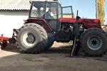 Талас: коляскада отурган 33 жаштагы Айтбек өз колу менен жер айдоочу трактор курады