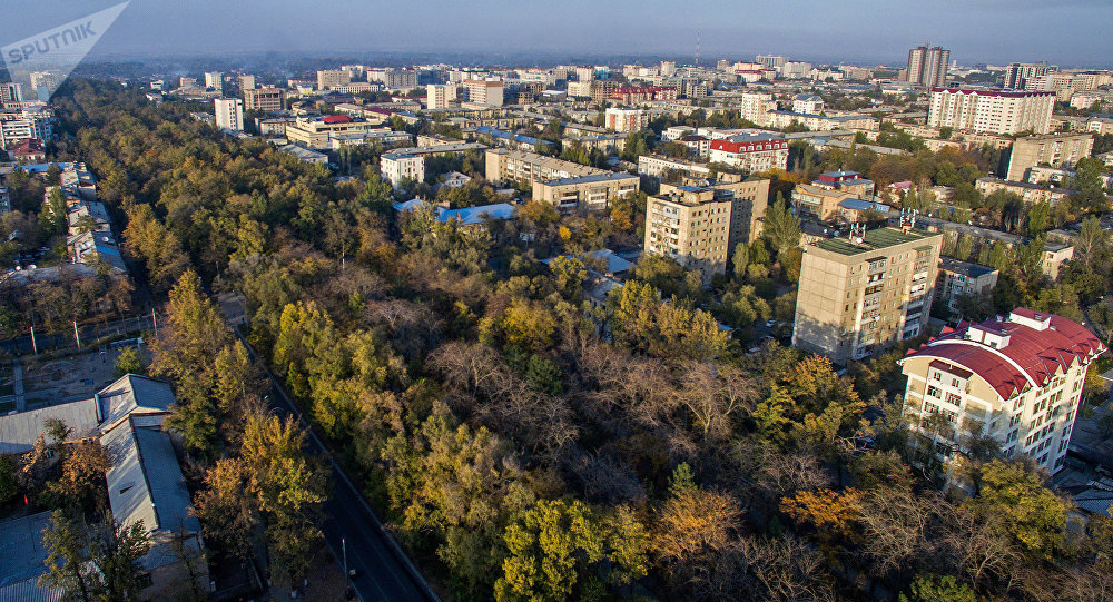 Вид на бульвар Молодой Гвардии в Бишкеке с высоты. Архивное фото