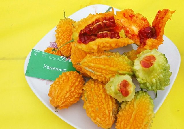 На фестивале ООН в Оше фермеры представили инновационные продукты