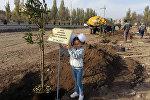 Семилетняя Бишкекчанка Камилла