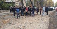 Бишкекчане выступили против вырубки деревьев на пересечении улиц Тыныстанова и Жумабека для организации гостевой парковки МВД КР