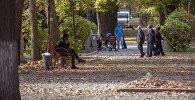 Отдыхающие в одном из парков Бишкека. Архивное фото