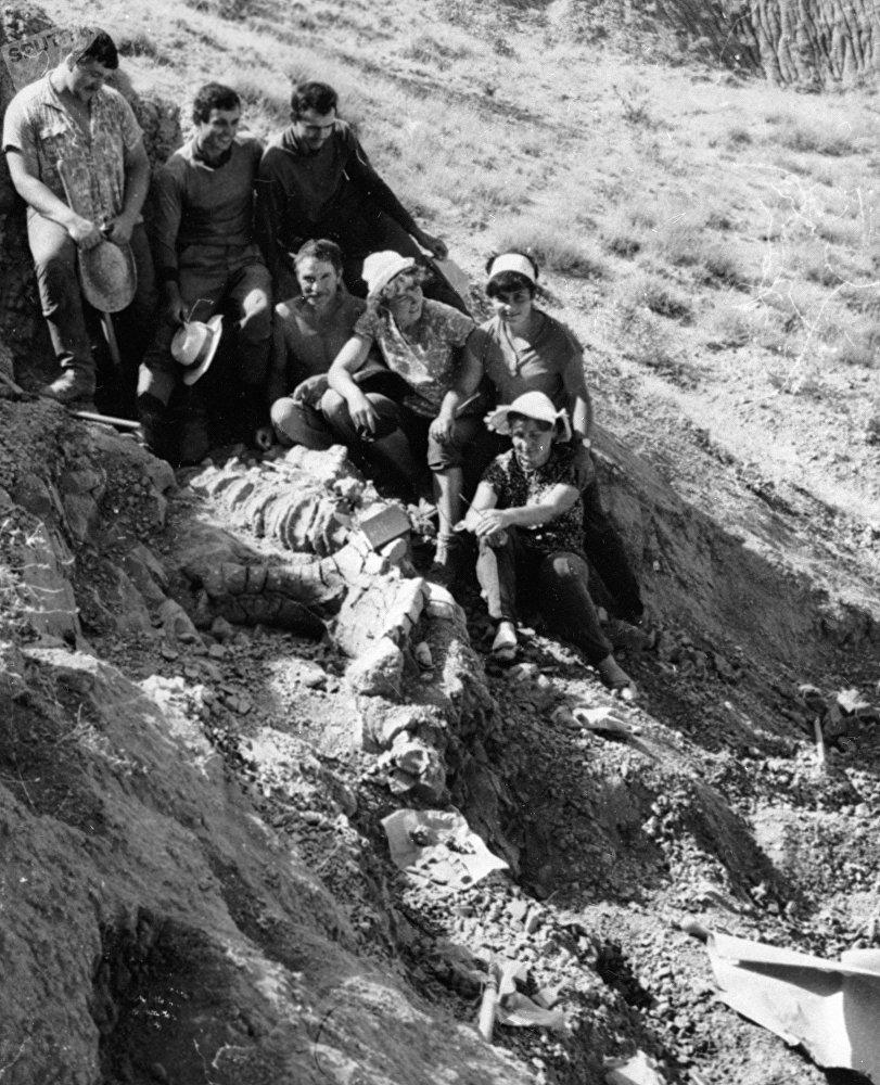 Таш-Көмүрдө табылган динозаврды изилдегени барган экспедициялык топ, 1969-жыл