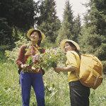 Ысык-Көл облусунун тоолорун кыдыруу маалында турист эки кыз гүл терип жатышат. Кыргызстандын модалуу бийкечтери 80-жылдардын башында ушундай эле