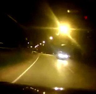 Выбежавший на дорогу слон спровоцировал ДТП в Таиланде — видео