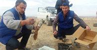 Браконьерство в Иссык-Кульской области