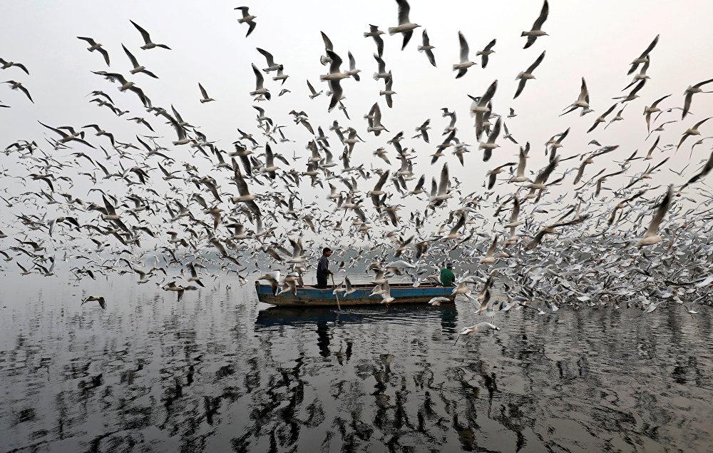 Река Джамна в Индии