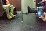 Крыса в метро Нью-Йорка довела до истерики американцев — смешное видео
