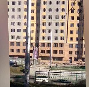 Строители в Бишкеке выбрасывают из окон 8-го этажа мешки с мусором — видео