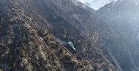 Уже сутки горит лес под Бишкеком — видео