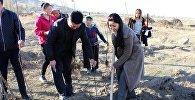 На территории Нижне-Серафимовского дома-интерната для престарелых и людей с инвалидностью посадили 1500 фруктовых деревьев