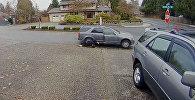 Вор скрылся с добычей, оставив напарницу, — видео из США