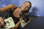Девушка делает селфи с кошкой. Архивное фото