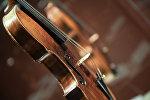 Скрипка. Архивное фото