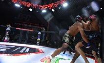 Турнир MMA в Бишкеке. Архивное фото