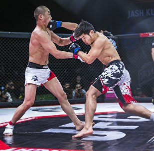 Турнир JFC MMA 3 по боям без правил в Бишкеке