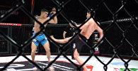 Мощные удары и болевые — видео лучших моментов с турнира JFC в Бишкеке