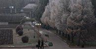 Люди гуляют по парку в центре Бишкека. Архивное фото