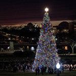 Елка перед зданием конгресса США в Вашингтоне — одна из двух главных елок страны. Церемонию зажжения огней в этом городе проводят в присутствии конгрессменов и сенаторов.