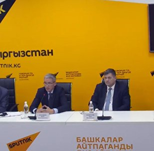 Итоги работы стран ЕАЭС обсудили в МПЦ Sputnik Кыргызстан