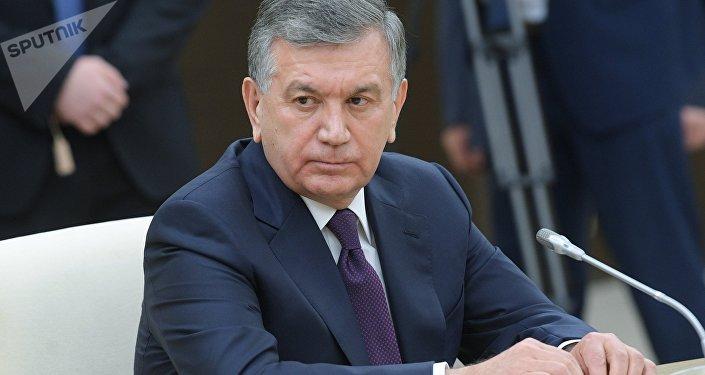 Президент Шавкат Мирзиёевдин архивдик сүрөтү