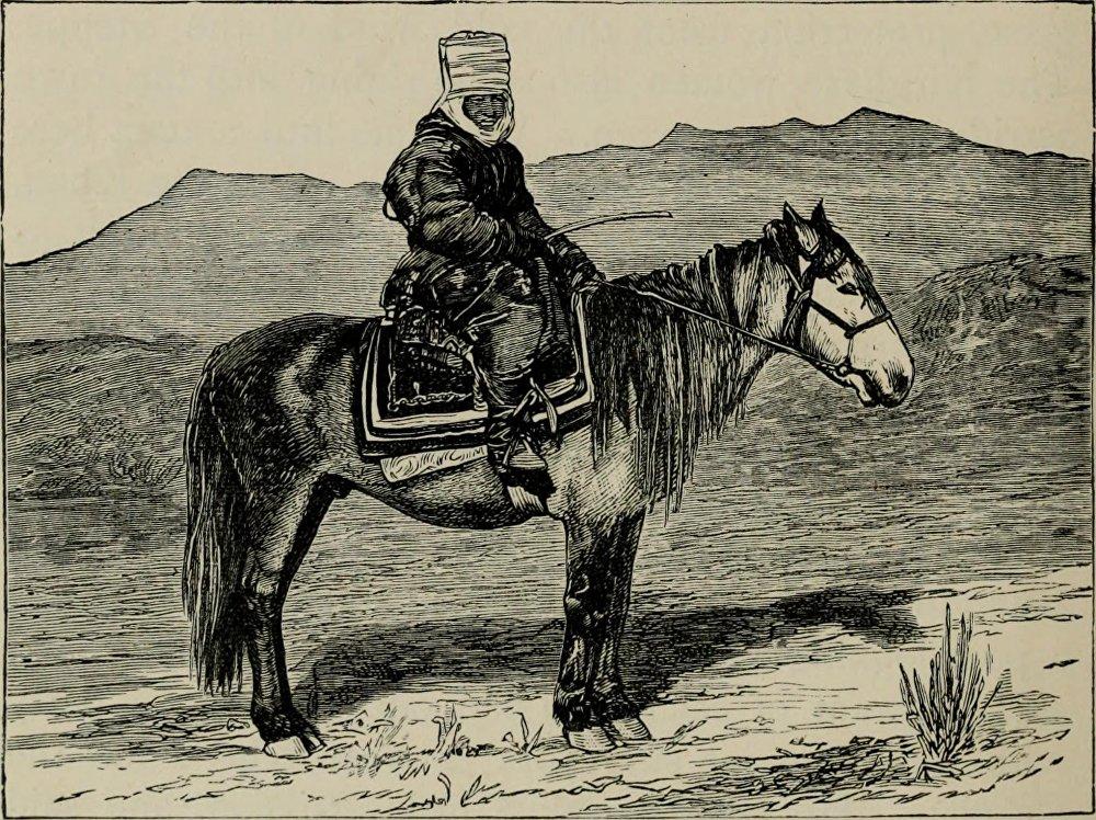 Алайык кыргыз келин. Лансдейл аялды шаарга жарманкеге бараткан жеринен кезиктиргенин жазган