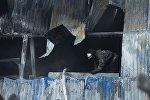 Новосибирск облусунун Чернореченский айылындагы бут кийим тигүү цехинен чыккан өрттөн 24 жана 27 жаштагы эки кыргызстандык каза болгон