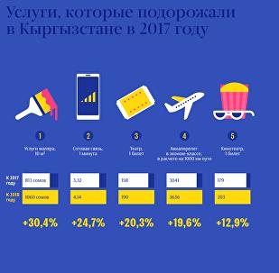 Услуги, которые подорожали в Кыргызстане в 2017 году
