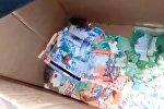 Поймали с поличным — в Астане мыши погрызли деньги в банкомате. Видео