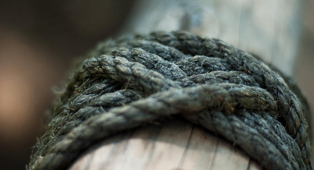 Веревка обмотанное на дереве. Архивное фото