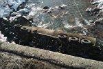 Бензовоз марки Freightliner упал в реку Чычкан