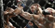 UFC уюмунун учурдагы чемпиону Хабиб Нурмагомедовтун архивдик сүрөтү