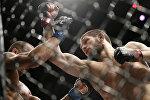 UFC чемпиону, россиялык мушкер Хабиб Нурмагомедов беттеш учурунда. Архив