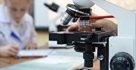 Микроскоп. Архив