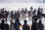 Бишкектин четиндеги Ак-Бата жаңы конушунда аламан улак