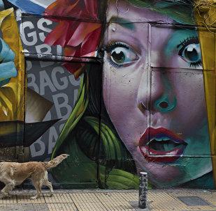 Собака проходит мимо граффити на стене магазина в Афинах (Греция)