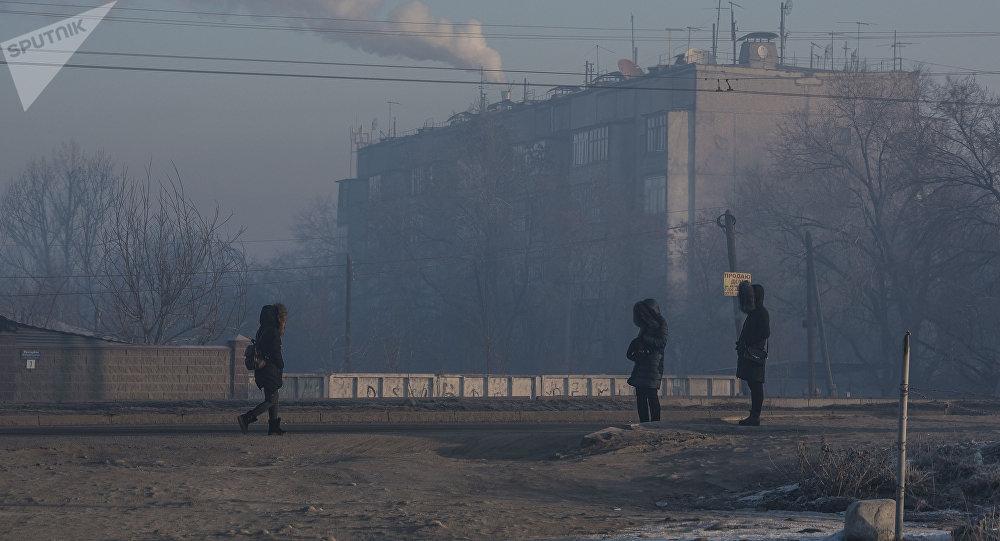 Горожане ждут транспорт на обочине улицы в Бишкеке. Архивное фото