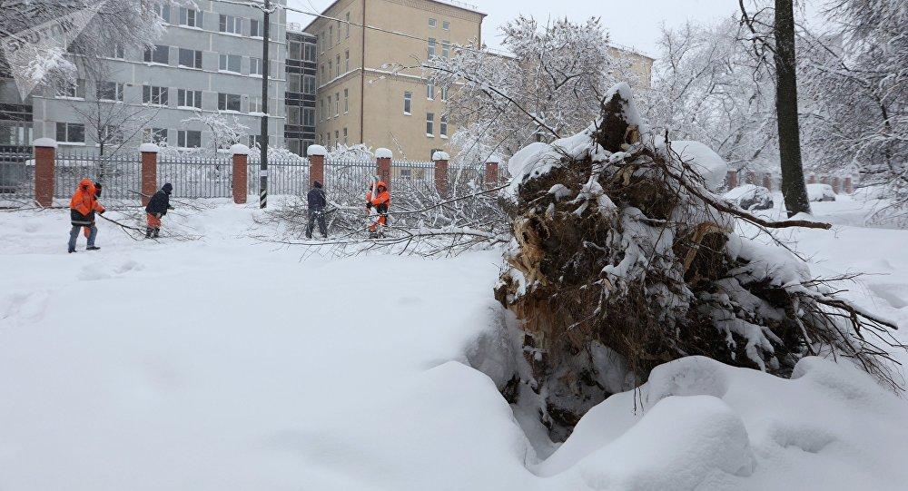 Коммунальщики столицы навсе 100% готовы кмощным снегопадам