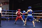 Башка, башка ур! Бишкектеги бокс боюнча турнирдин видеосу