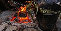 Огонь в печке. Архивное фото