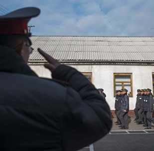 Сотрудники МВД во время утреннего сбора. Архивное фото