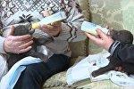 Найденных на мусорке медвежат кормят из бутылочки — умилительное видео