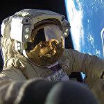 Роскосмос представил первые фотографии рекордного выхода в открытый космос космонавтов А. Мисуркина и А. Шкаплерова