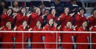 Болельщицы сборной КНДР на соревнованиях зимней Олимпиады в Южной Корее