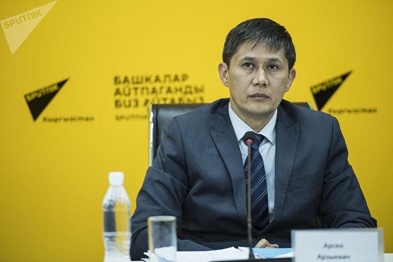 Замдиректора Госагентства охраны окружающей среды и лесного хозяйства Арсен Рыспеков во время видеомоста в мультимедийном пресс-центре Sputnik Кыргызстан