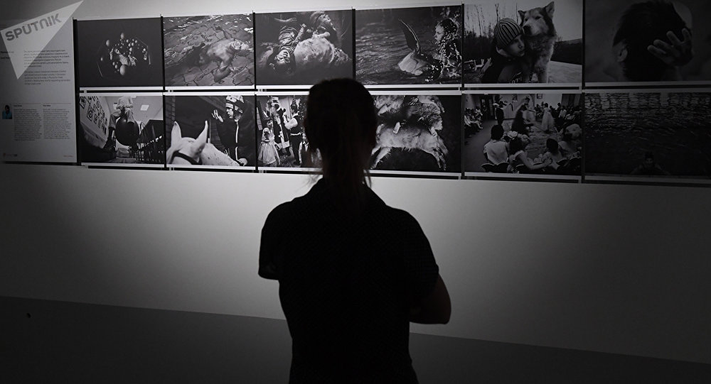 Посетитель на выставке победителей и призеров Международного конкурса фотожурналистики имени Андрея Стенина в Москве. Архивное фото