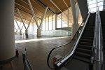 Эскалатор. Архивное фото