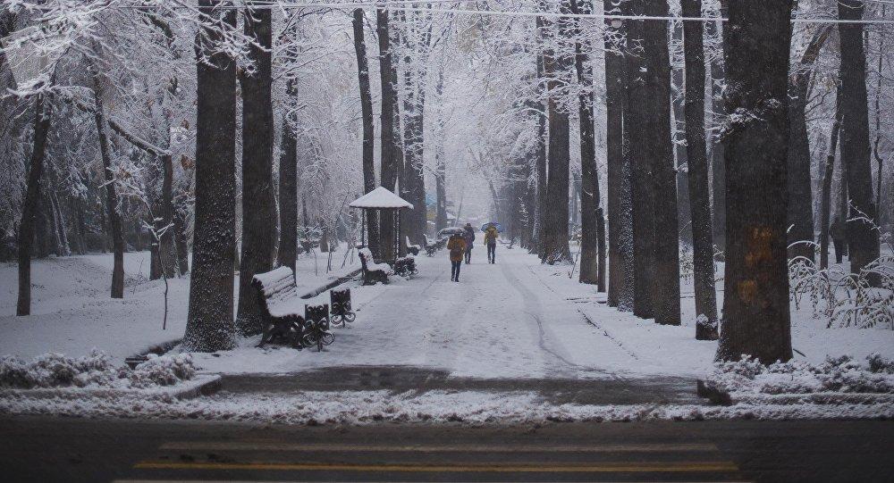 Покрытый снежным серебром проспект Эркиндик. Архивное фото